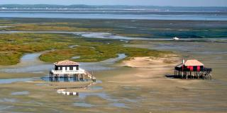 Discover the beauties of the Arcachon Basin